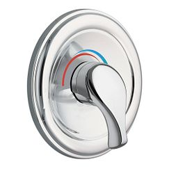 Chrome Moentrol® valve trim
